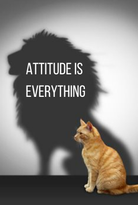 Attitude is Everything! 1